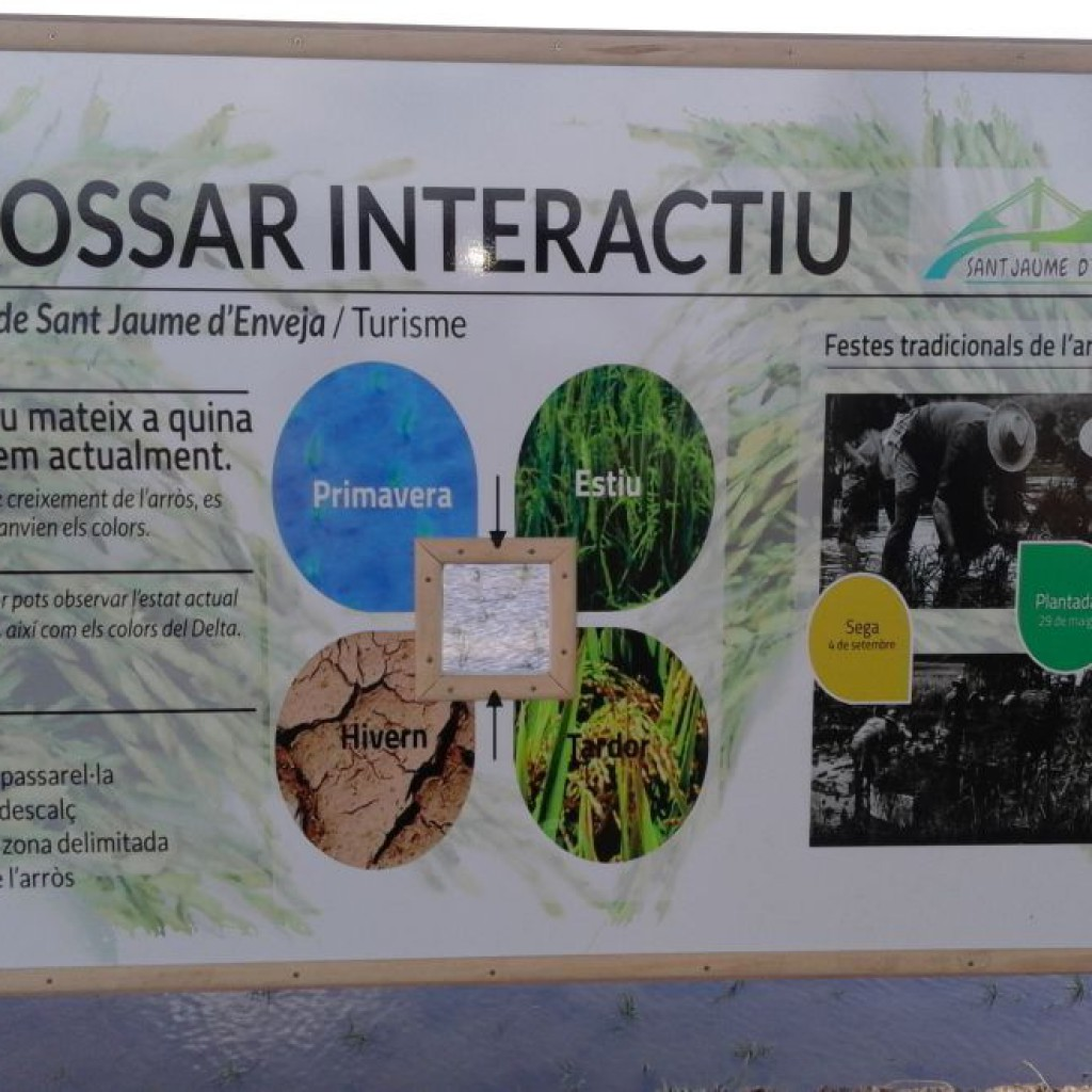 Arrossar interactiu