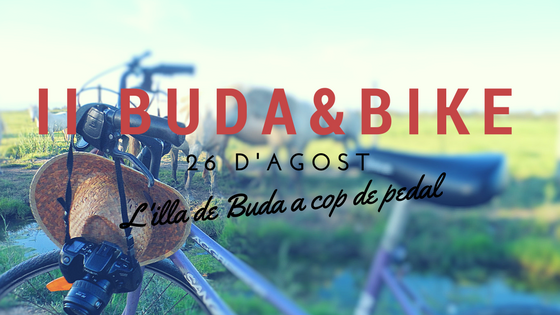 buda & bike